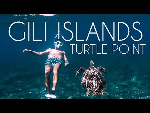 SWIMMING WITH TURTLES ON GILI ISLANDS