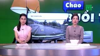 VTC14 | Cộng đồng mạng thót tim với clip em bé bò qua đường quốc lộ
