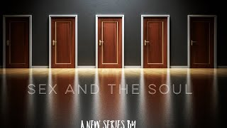(10) Sex and the Soul series