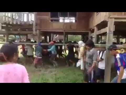 Exotic Indonesia, walking Houses