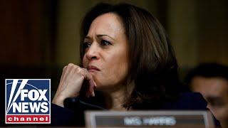 Ex-ICE director slams Kamala Harris for comparing ICE to KKK