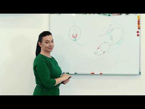 Массаж промежности во время беременности.Подготовка промежности к родам.