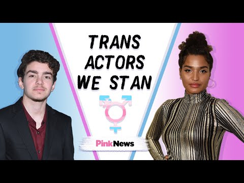 Transgender actors playing trans characters on TV