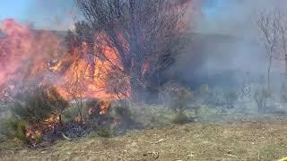 Exercice autour d'un feu de forêt géré par les pompiers de l'Ardèche