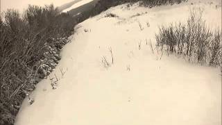 Play Penobscot Trail