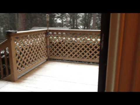 Ninja Blog 1: Snow Storm!