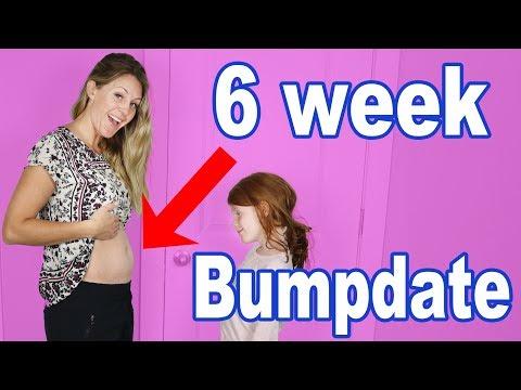 6 Week Pregnancy Bumpdate