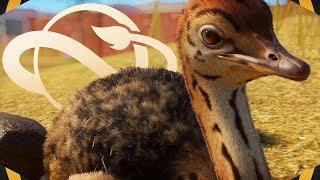 Bir Hayvanat Bahçesi İnşa edelim! (Franchise Modu)İLK ÖZEL İNŞA | Gezegen Hayvanat Bahçesi
