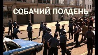 """КИНО """"СОБАЧИЙ ПОЛДЕНЬ"""" - ГРОМКОЕ ОГРАБЛЕНИЕ"""
