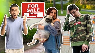 Someone put our dog up for sale!(brawadis & faze rugs reaction)