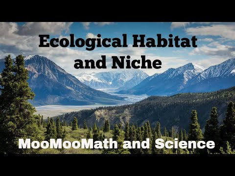 Biological Niche and Habitat
