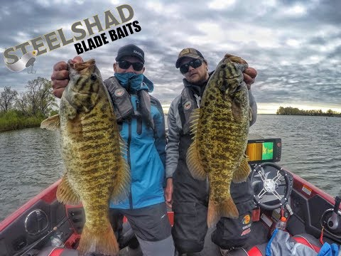 Presque Isle Bay,  Lake Erie,  May 2017 Smallmouth Bass Trip With SteelShad