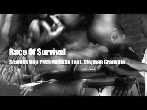 Race of Survival (Sean McCabe Mix) - Seamus Haji