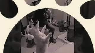 DURA - DOG BUBBLE DANCING