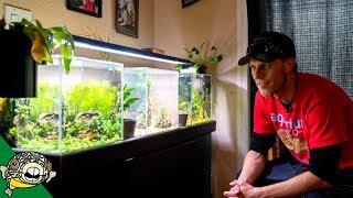 A Real Fish Tank Hobbyist [Tour]