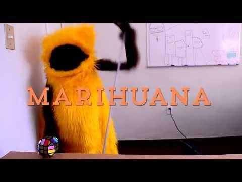 Lugo y la marihuana