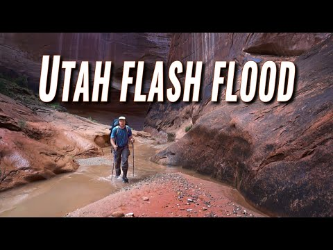 Flash Floods in May? Halls Creek Narrows, Utah
