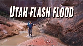 Flash Floods in May? (Halls Creek Narrows, Utah)