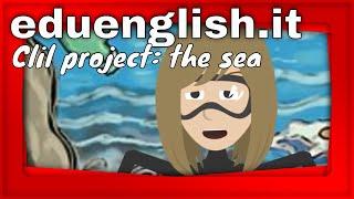 CLIL Scuola Primaria, gli ecosistemi in inglese: il mare