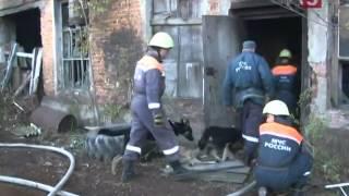 В День гражданской обороны, МЧС проводит всероссийскую тренировку
