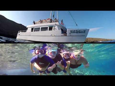 Maui Snorkeling Molokini And Whale Watching