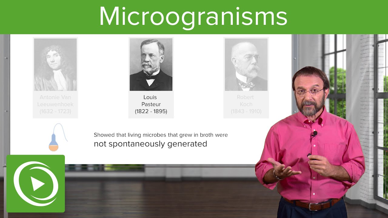 The Concept of Microorganisms: Historical Findings – Microbiology | Lecturio