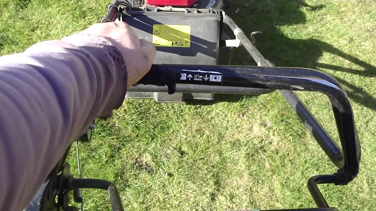 honda hrh 536 pro roller self propelled 21 lawnmower. Black Bedroom Furniture Sets. Home Design Ideas