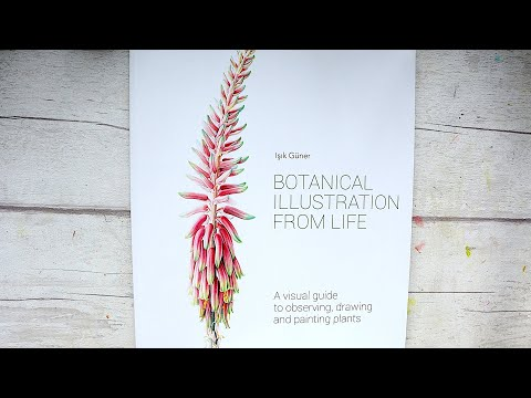Botanical Illustration from Life by Isik Güner | Book Review