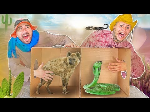 What's in the Box FORT Challenge ? (LIVE ANIMALS)