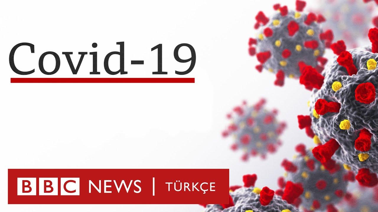 Koronavirüs vücudumuzu nasıl etkiliyor? Covid-19 nedir?