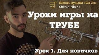 Как научиться играть на трубе самостоятельно. Уроки трубы для новичков и с нуля.