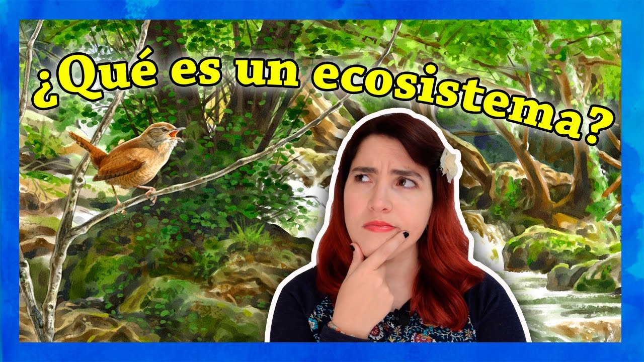qu es un ecosistema youtube