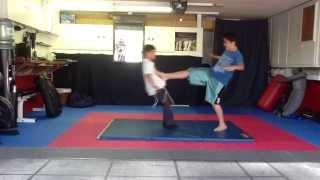 Alon's Yellow Belt Test