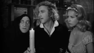 Young Frankenstein in 2 minutes and 32 seconds