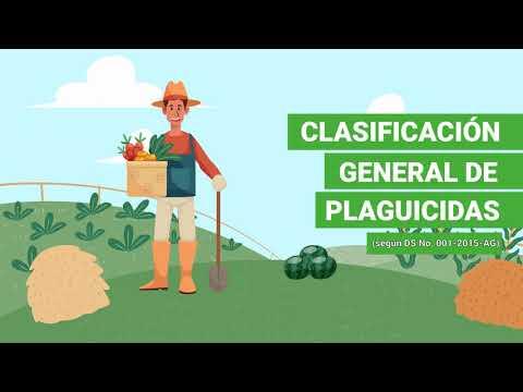 Download Clasificación de plaguicidas