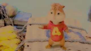 ♥ Alvin and Brittany ♥ - Why don't you love me? ♥