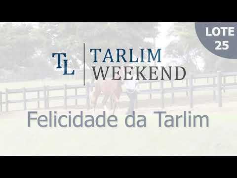 Lote 25 - Felicidade da Tarlim (6º Leilão Tarlim)