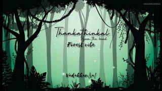 Thankathinkal kiliyayi | AGAM the band | Forest vibe | Indraprastham Movie | Malayalam status