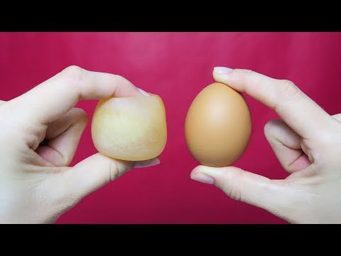 10 AMAZING EGGS LIFE HACKS AND TRICKS!