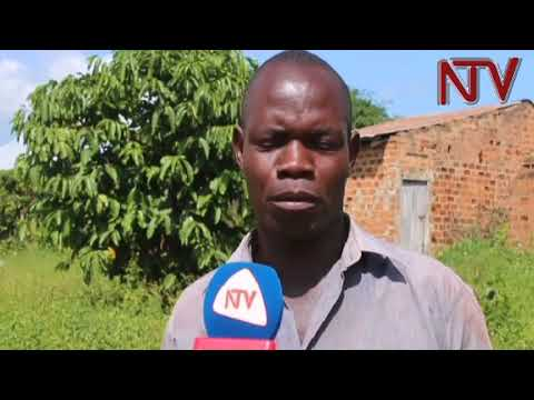 Nakaseke schools in dire state, learners attend classes under trees