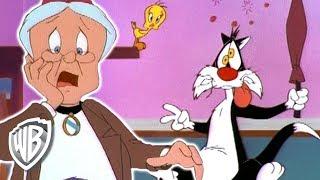 Looney Tunes en Español Latino America | La impostora de la Abuelita | WB Kids