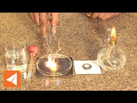 Magnesium Oxide and water| Acids & Bases | Chemistry