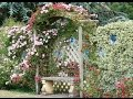 Cottage Garden Designs I Cottage Garden Designs Ideas