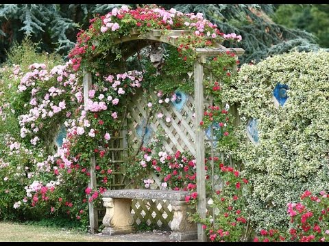 Cottage Garden Designs I Cottage Garden Designs Ideas YouTube