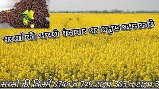 सरसों की खेती पर मुख्य जानकारीInformation on Mustard Farming Gyan