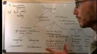 Введение в языкознание.  Фонетика.  Ударение