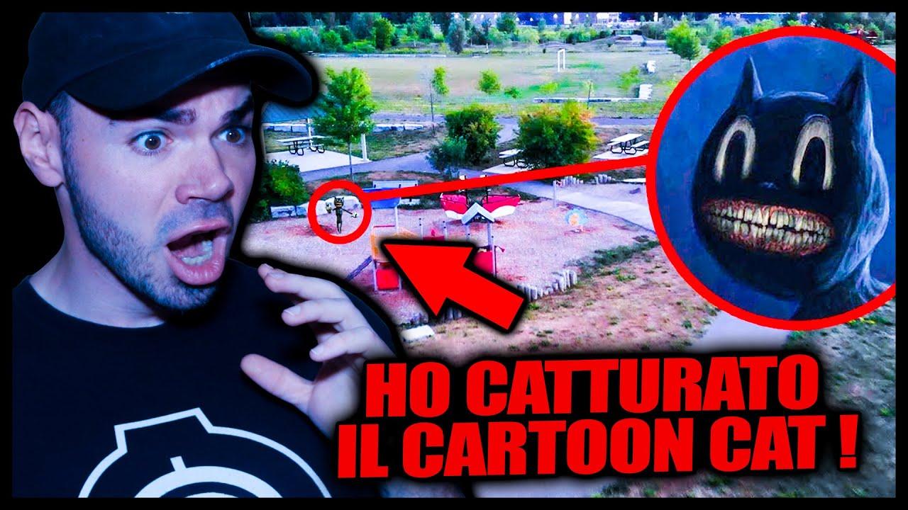 HO CATTURATO IL CARTOON CAT 😾 CON IL DRONE *spaventoso*