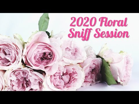 Fall & Winter 2020 Fruity Collection Sniff Session from YouTube · Duration:  17 minutes 59 seconds