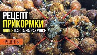 Карпфишинг TV :: Прикормка для ловли карпа на основе ракушки. Рецепт
