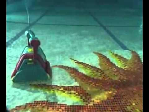 Albercas Ecologicas Y Su Robot Dolphin Diagnostic Youtube